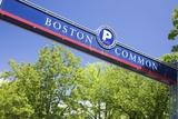 Boston Common Street Sign  Boston  MA