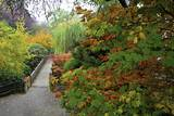 Fall Colors  Crystal Spring Garden  Portland  Oregon