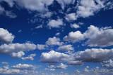 Puffy White Clouds in a Blue Sky