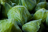 Green Cabbage Fresh Produce Photo Poster Print