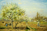 Camille Pissarro Le Verger The Orchard Art Print Poster