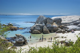 Tourists and Locals Enjoying the Scenic Penguin Beach  Boulders Beach National Park  Simonstown