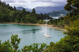 Sailing Boat in the Marlborough Sounds  South Island  New Zealand  Pacific