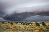 Storm Clouds Threaten the Kalahari  Kgalagadi Transfrontier Park in Summer  Northern Cape