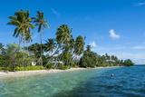 Palm Fringed White Sand Beach on an Islet of Vavau  Vavau Islands  Tonga  South Pacific  Pacific