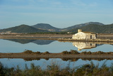 Salt Lake  Ses Salines Natural Park  Ibiza  Balearic Islands  Spain  Mediterranean  Europe