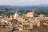 View over City Rooftops to Rolling Hills  the Basilica of San Francesco Prominent  Siena
