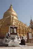 Buddhist Nun Meditating by Gold Stupa  Shwezigon Paya (Pagoda)  Nyaung U