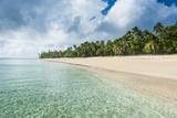 Palm Fringed White Sand Beach in Haapai  Haapai Islands  Tonga  South Pacific  Pacific