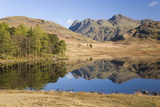 The Langdale Pikes Reflected in Blea Tarn  Above Little Langdale  Lake District National Park