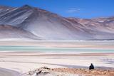 Man Sitting on Rocks at Miscanti Volcano and High Plateau Lagoon in San Pedro De Atacama Desert