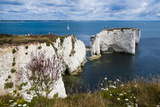 Chalk Stacks and Cliffs at Old Harry Rocks  Between Swanage and Purbeck  Dorset