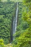 Papapapai-Tai Falls  Upolu  Samoa  South Pacific  Pacific