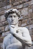 The David  by Michelangelo  Palazzo Vecchio