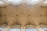 Bath Abbey Ceiling  Bath  Avon and Somerset  England  United Kingdom  Europe