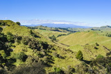 Green Mounds with the Tongariro National Park in the Background  North Island  New Zealand  Pacific