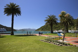 Waterfront Gardens  Picton  Marlborough Region  South Island  New Zealand  Pacific