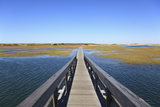 Boardwalk  Salt Marsh  Sandwich  Cape Cod  Massachusetts  New England  Usa