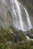 Earland Falls  Routeburn Track  Fiordland National Park  South Island  New Zealand  Pacific