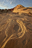 Erosion Pattern in Yellow Sandstone under Patterned Clouds  Valley of Fire State Park  Nevada  Usa