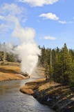 Eruption of Riverside Geyser Seen from Firehole River Bridge