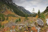 Cascade Canyon in Autumn (Fall)  Grand Teton National Park  Wyoming  Usa