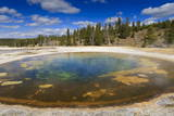 Chromatic Pool and Surrounds on a Clear Day  Upper Geyser Basin  Yellowstone National Park
