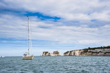 Sailing Boat at Old Harry Rocks  Between Swanage and Purbeck  Dorset  Jurassic Coast  England