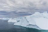 Huge Icebergs Calved from the Ilulissat Glacier  Ilulissat  Greenland  Polar Regions