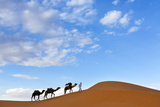 Berber Man Leading a Train of Camels over the Orange Sand Dunes of the Erg Chebbi Sand Sea