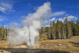 Eruption of Riverside Geyser  Firehole River  Upper Geyser Basin