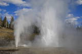 Turban  Vent and Grand Geysers Erupt  Upper Geyser Basin  Yellowstone National Park  Wyoming  Usa