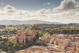 The View over the Rooftops of Siena from Torre Del Mangia  Siena  Tuscany  Italy  Europe