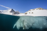Above and Below View of Glacial Ice in Orne Harbor  Antarctica  Polar Regions