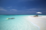 Couple Snorkelling in Maldives  Indian Ocean  Asia