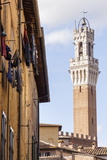 Torre Del Mangia Above the Streets of Siena  UNESCO World Heritage Site  Tuscany  Italy  Europe