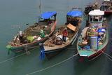 Fishing Boat in Nathon City  Koh Samui Island  Thailand  Southeast Asia  Asia