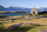 Church of the Good Shepherd  Lake Tekapo  Canterbury Region  South Island  New Zealand  Pacific