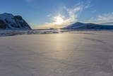 Penguin Tracks Left on First Year Sea Ice in the Lemaire Channel  Antarctica  Polar Regions