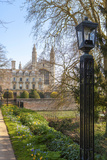 A View of Kings College from the Backs  Cambridge  Cambridgeshire  England  United Kingdom  Europe