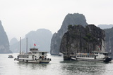 Chinese Junk in Halong Bay  UNESCO World Heritage Site  Vietnam  Indochina  Southeast Asia  Asia