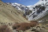 Hemis National Park in Winter  Ladakh  India  Asia