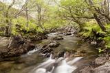 The River Undalain in Glen Undalain  Highlands  Scotland  United Kingdom  Europe