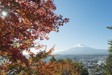 Mount Fuji  3776M  UNESCO World Heritage Site  and Autumn Colours  Honshu  Japan  Asia
