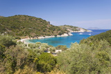 View from Hillside over Filiatro Bay  Near Vathy (Vathi)  Ithaca (Ithaki)