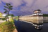 Hiroshima Castle Grounds  Hiroshima  Honshu  Japan  Asia