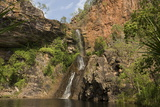 Tjaynera Falls and Waterhole on Sandy Creek  Litchfield National Park  Northern Territory