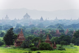 Temples on Bagan Plain  Bagan (Pagan)  Myanmar (Burma)  Asia