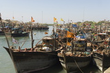 Fishing Boat Harbour  Porbander  Gujarat  India  Asia