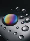 Spectrum I